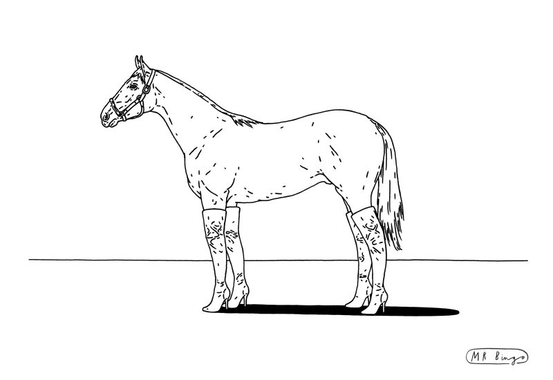 Hooker horse by Mr Bingo